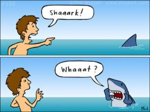 Phils favourite Shaaark! cartoon