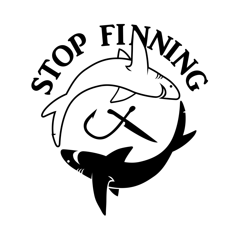 Haus Fu Emden Karte.Haiprodukte In Deutschland Stop Finning Deutschland E V