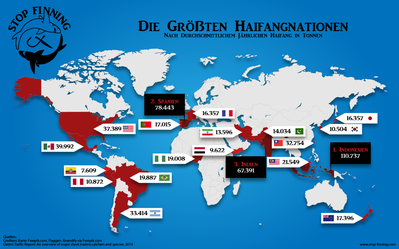 Globaler Handel mit Haiprodukten